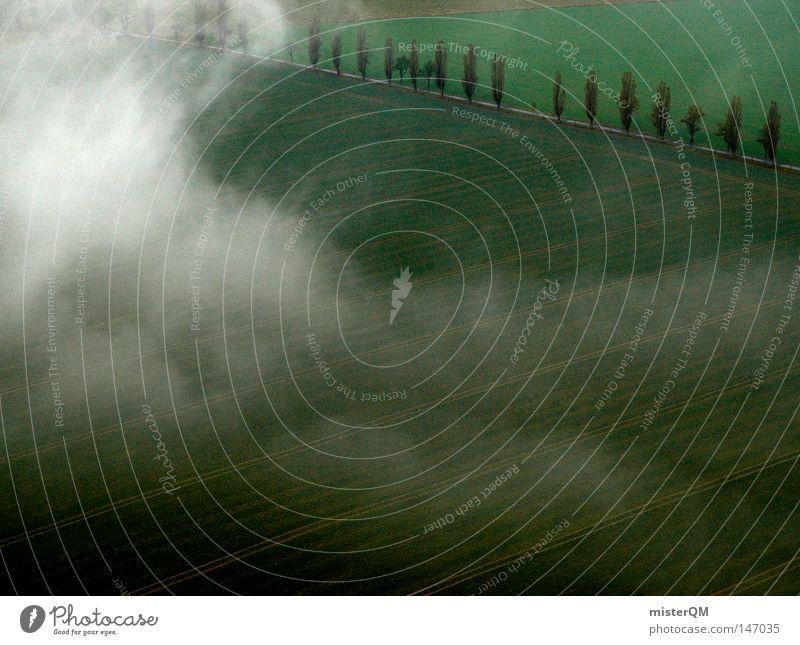 Wenn die Erde erwacht - Herbsttag Natur grün schön weiß Baum Wolken dunkel kalt Straße Herbst Wege & Pfade Hintergrundbild Tod grau außergewöhnlich träumen
