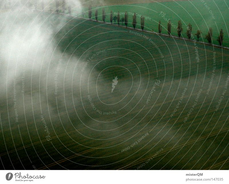 Wenn die Erde erwacht - Herbsttag Natur grün schön weiß Baum Wolken dunkel kalt Straße Wege & Pfade Hintergrundbild Tod grau außergewöhnlich träumen