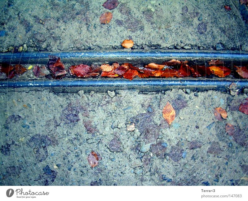 Feeling down when the autumn has come ... Wasser blau rot Blatt Straße kalt Herbst grau Stein Linie braun Metall dreckig Metallwaren Verkehrswege gerade