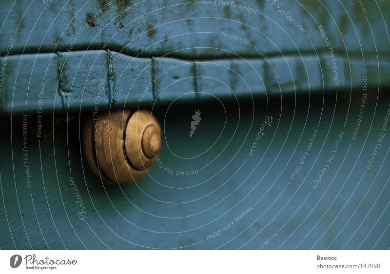 goes blue blau gelb Schnecke Fass Schatten dreckig Muster ruhig Tier