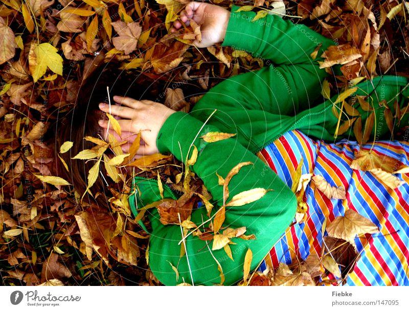versteckspiel à la kindergarten ... Herbst Blatt mehrfarbig braun Jahreszeiten verstecken Boden gestreift grasgrün Gesicht verborgen liegen Freude Langeweile