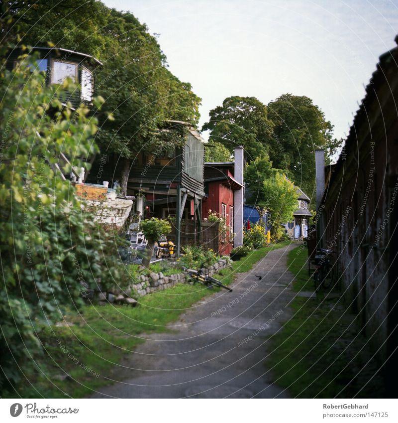 Kopenhagen01 Himmel Baum grün blau Haus Holz Wege & Pfade Wohnung Europa Häusliches Leben Hütte Dänemark Seeland Skandinavien Kopenhagen Unterkunft