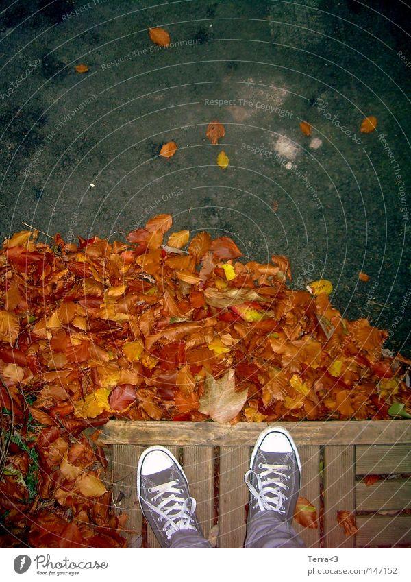 Zweibeinig Jugendliche Baum blau rot Blatt gelb Straße Herbst Holz grau Wärme Schuhe braun orange Bekleidung Boden