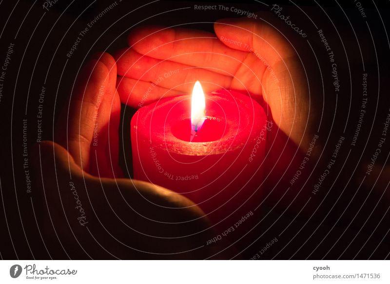 Kerzenschein Weihnachten & Advent Hand Erholung ruhig dunkel Wärme Denken Stimmung hell glänzend leuchten Feuer Hilfsbereitschaft berühren Hoffnung Schutz