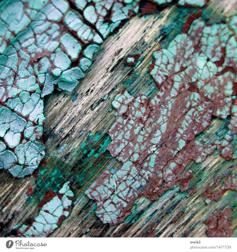 Spätschicht Ruderboot Bordwand Farbstoff Niveau Holz alt dehydrieren trist trocken mehrfarbig grün türkis Verfall Vergänglichkeit Zerstörung rotbraun