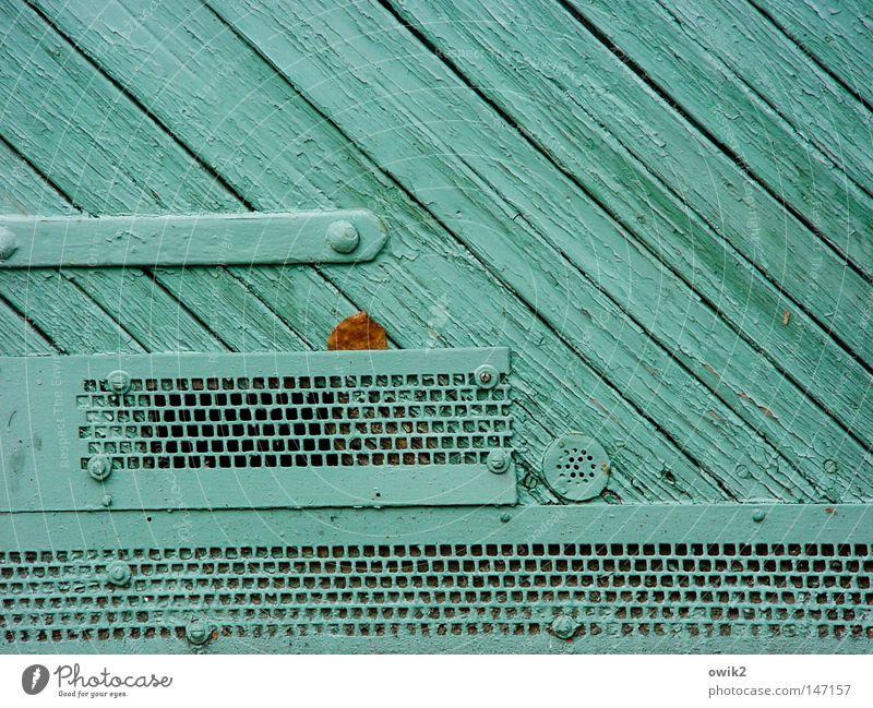 Schöner unsere Städte Blatt Farbe Herbst Holz Farbstoff Kunst Tür geschlossen trist Dekoration & Verzierung streichen Tor türkis Holzbrett