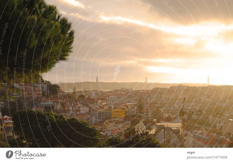 Lissabon II Himmel Ferien & Urlaub & Reisen Stadt Sommer Sonne Baum Wolken Haus Ferne Freiheit Tourismus Aussicht Ausflug Schönes Wetter Abenteuer Fluss