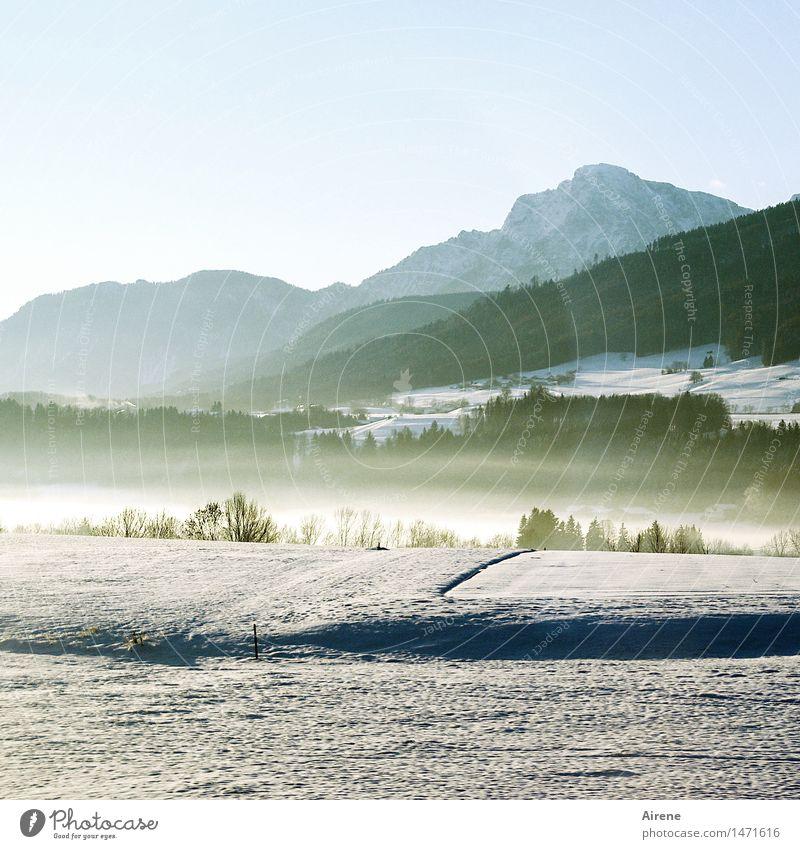 es war einmal III Schnee Berge u. Gebirge Natur Urelemente Luft Himmel Winter Schönes Wetter Nebel Alpen Allgäuer Alpen Gipfel Schneebedeckte Gipfel Oberbayern