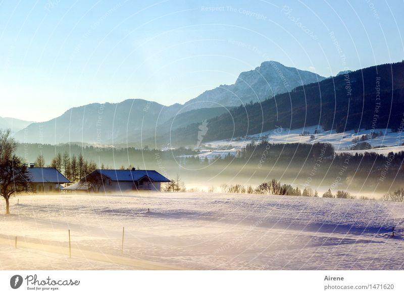 es war einmal VI Winter Schnee Landschaft Himmel Wolkenloser Himmel Schönes Wetter Nebel Hügel Alpen Berge u. Gebirge Schneebedeckte Gipfel