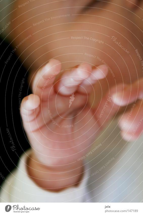 kleines wunder Mensch Kind schön Erholung Hand ruhig Mädchen Gefühle Glück Zufriedenheit Haut ästhetisch Baby fantastisch niedlich Finger