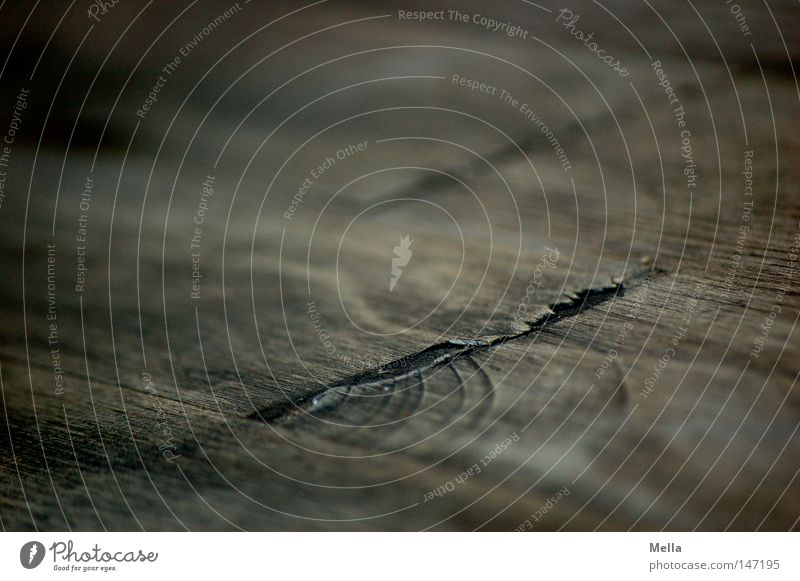 Holz Material Rohstoffe & Kraftstoffe Strukturen & Formen Hintergrundbild Riss Ecke Furche Naht Nut alt verwittert morsch grau braun quer diagonal Linie