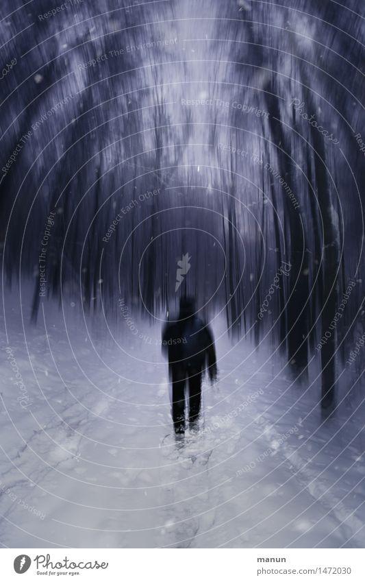 I walk alone Mensch Mann Einsamkeit ruhig Winter dunkel Wald kalt Erwachsene Gefühle Wege & Pfade Schnee gehen maskulin träumen Eis
