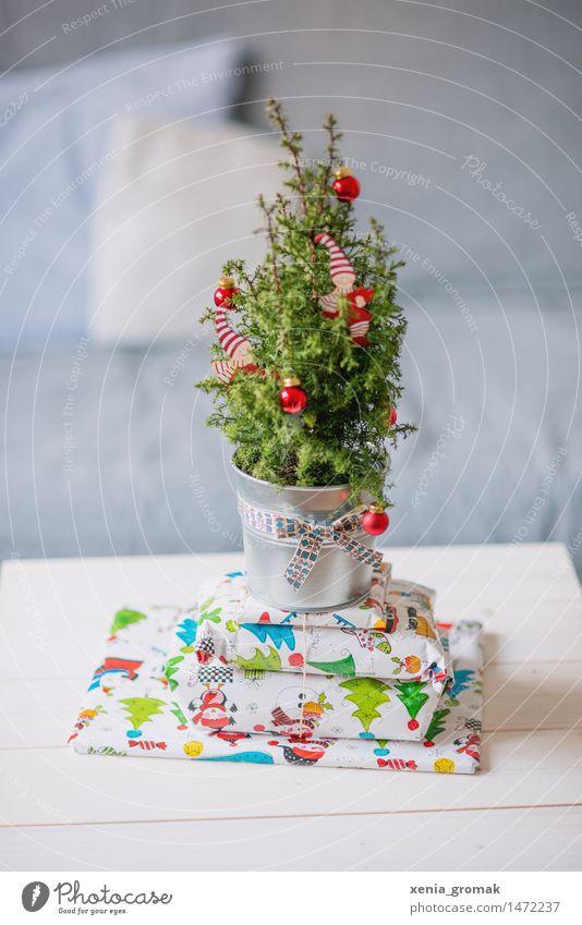 Weihnachten Feste & Feiern Weihnachten & Advent Baum Grünpflanze Topfpflanze exotisch grün rot silber Glück Fröhlichkeit Geschenk verpackt Weihnachtsbaum