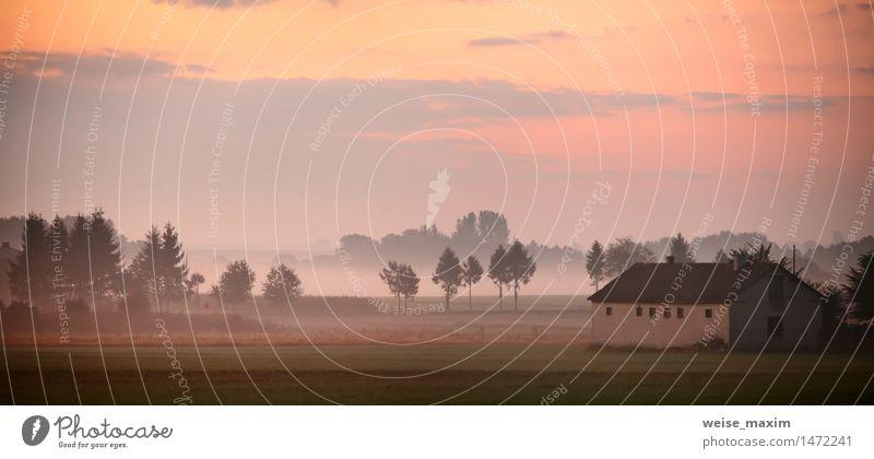 Herbst in Polen. Nebeliger Morgen des Herbstes. September Morgendämmerung Natur Ferien & Urlaub & Reisen grün Baum rot Landschaft Haus Wald gelb Wand Wiese