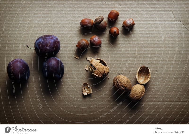 Pflaume, Haselnuss und Walnuss Ernährung Herbst Garten Frucht Ernte Backwaren Schalen & Schüsseln Gartenbau Nuss verpackt einpacken senden Pflaume Nussschale