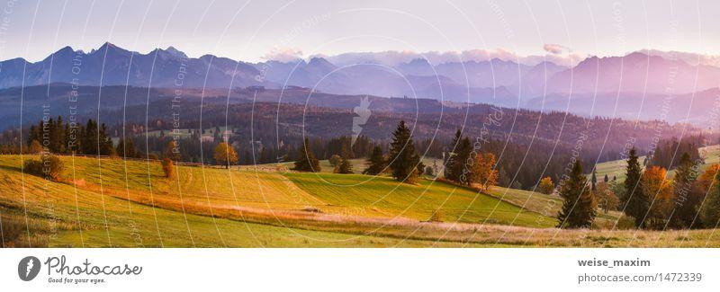 Sonniger Abend im Herbst. Sonnenuntergang in Bergen. Himmel Natur Ferien & Urlaub & Reisen blau grün Baum Landschaft Wolken Wald Berge u. Gebirge gelb Wiese