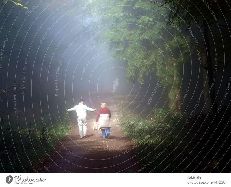 Spaziergang im Nebel Wald Frau Mann Hund Licht hell geschlossen Fußweg Wege & Pfade Baum Arme ausbreiten sprechen laufen gehen wandern Forstweg Strahlung Sonne
