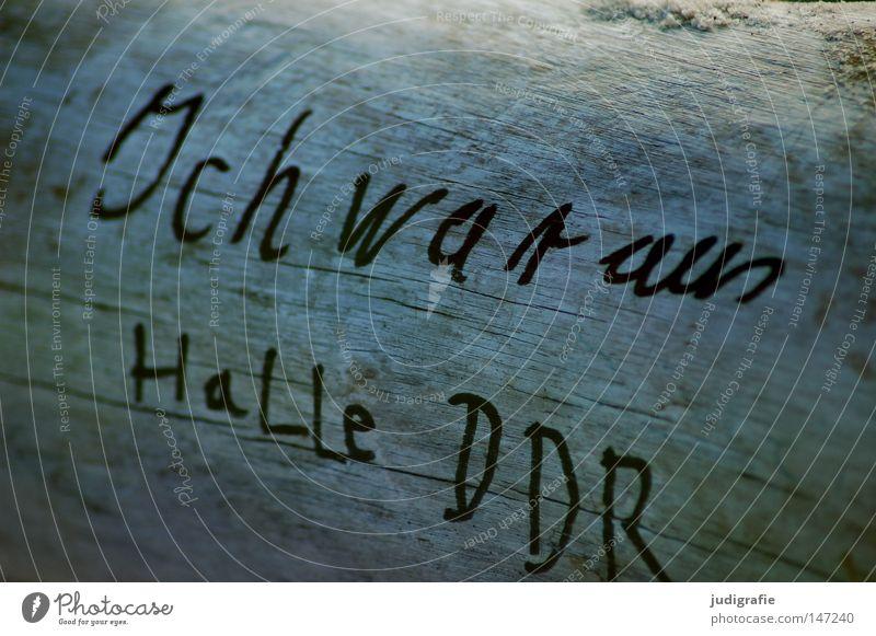 Halle DDR Halle (Saale) Schriftzeichen Handschrift Typographie Buchstaben Holz Baumstamm Weststrand Darß Information Spuren Natur Ferien & Urlaub & Reisen