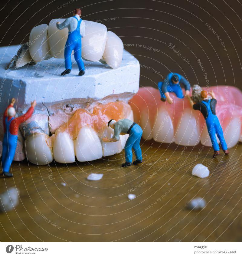 Miniwelten - Zahnsanierung Mensch Mann blau Erwachsene Gesundheitswesen rosa Arbeit & Erwerbstätigkeit maskulin Mund Reinigen Team Zähne Beruf Arzt Quadrat