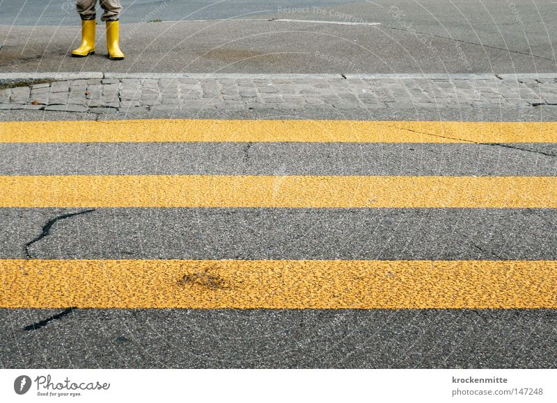 luege, lose, laufe Stadt Einsamkeit gelb Straße gehen Beine Schuhe Verkehr laufen warten gefährlich bedrohlich Streifen Schutz Asphalt Verkehrswege