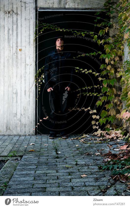 nachtschattengewächs Nachtschattengewächse Pflanze Efeu Wachstum grün Beton Teer schwarz Mütze Leder Lederjacke Stil stehen bewegungslos glänzend Wand Mann
