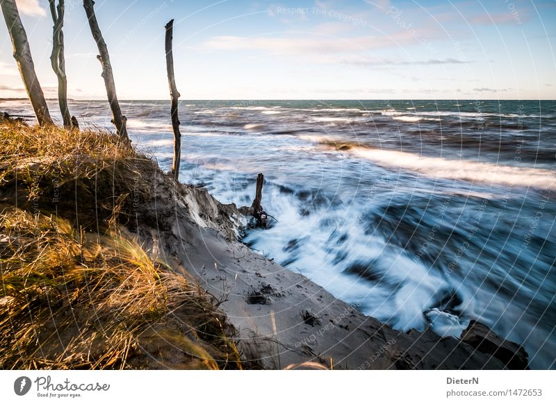 Wellengang Strand Meer Natur Landschaft Sand Wasser Wolken Horizont Wetter Wind Sturm Küste Ostsee blau gelb weiß Darß Gischt Mecklenburg-Vorpommern Weststrand