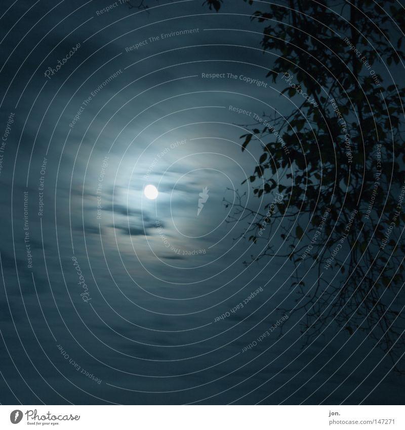 Mondschein Himmel ruhig Wolken Einsamkeit dunkel Bewegung Beleuchtung Ast Mond Nacht Licht Zweig Lichtspiel Himmelskörper & Weltall Mondschein