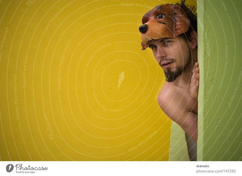 aufpasser gelb grün Hund Neugier Wachsamkeit Kontrolle Posten Überwachung Wachdienst hören Balkon Neubau dumm Beton Bart Kinnbart Mann Freude erstaunt Osten