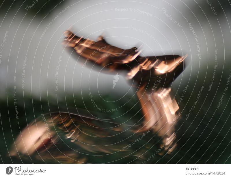 Hallali Weihnachten & Advent Tier Gefühle Bewegung Stil Lifestyle braun Metall Design träumen glänzend Dekoration & Verzierung modern Aktion ästhetisch Tanzen