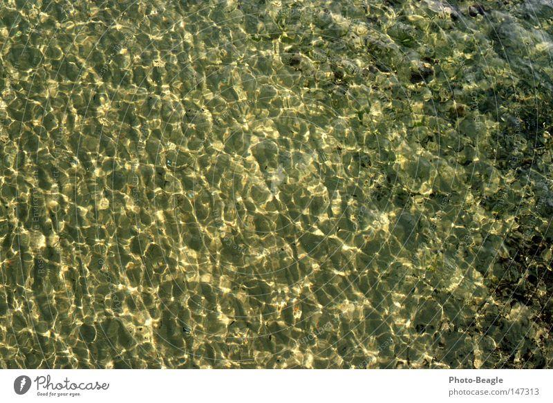 Meeresgrund Wasser Strand Ferien & Urlaub & Reisen Stein See Sand Wellen nass Ostsee Muschel Brandung Gischt Meerwasser