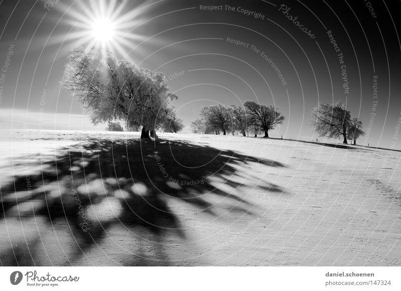 neue Weihnachtskarte 1 Himmel Natur blau weiß Baum Ferien & Urlaub & Reisen Sonne Winter Einsamkeit kalt Schnee Berge u. Gebirge Horizont Deutschland Wetter