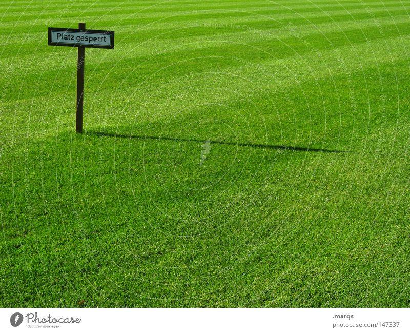 Restriktiv grün Sommer Wiese Sport Gras Schilder & Markierungen Platz Rasen Hinweisschild Warnhinweis Barriere Verbote saftig Fußballplatz gesperrt Sportplatz