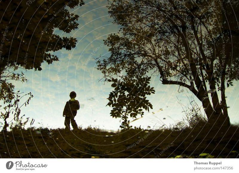 Himmelsbach Mensch Kind Natur Himmel Baum Einsamkeit dunkel Junge Herbst Gras hell maskulin Trauer trist Fluss stehen