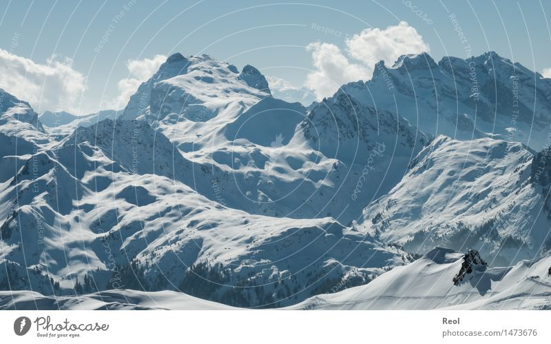 Schneelandschaft Wintersport Natur Landschaft Urelemente Himmel Wolkenloser Himmel Schönes Wetter Felsen Alpen Berge u. Gebirge Montafon Gipfel