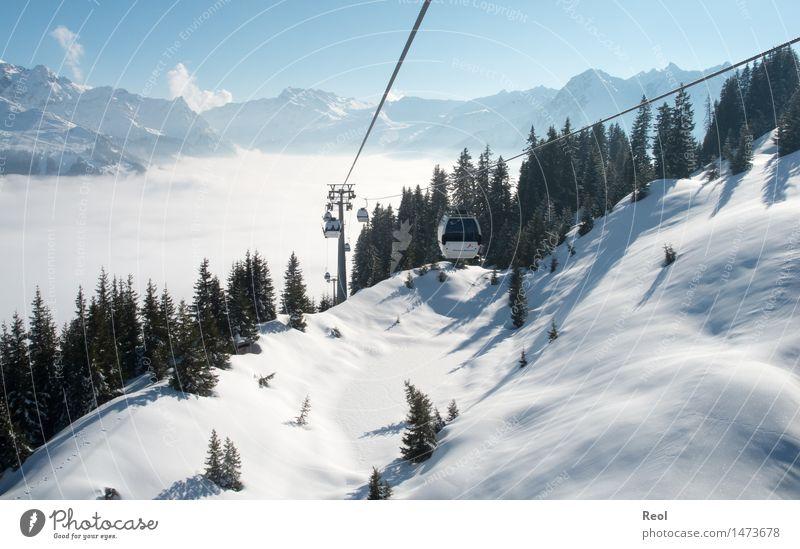 Bergbahn Wintersport Natur Landschaft Himmel Wolkenloser Himmel Schönes Wetter Schnee Tanne Wald Alpen Berge u. Gebirge Montafon Gipfel Schneebedeckte Gipfel