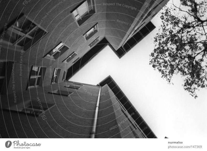 Eckzorzist BW Himmel blau Stadt weiß Haus schwarz gelb Fenster Spielen Architektur Berlin Wohnung Fassade dreckig Treppe Dach