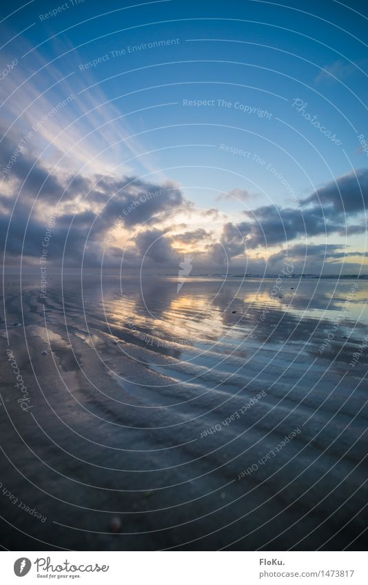 Ebbe Ferien & Urlaub & Reisen Ausflug Strand Meer Wellen Umwelt Natur Landschaft Urelemente Erde Sand Wasser Himmel Wolken Sonnenaufgang Sonnenuntergang Küste