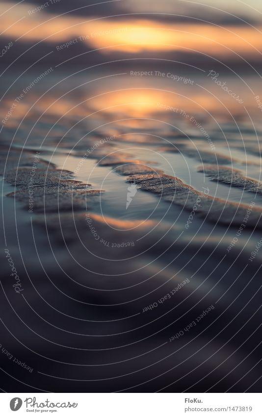 Wattenmeer im Abendlicht Ferien & Urlaub & Reisen Strand Meer Umwelt Natur Urelemente Erde Sand Wasser Sonne Sonnenaufgang Sonnenuntergang Sonnenlicht Wetter