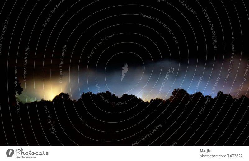 Lichter wald Umwelt Landschaft Wolkenloser Himmel Herbst Nebel Feld Wald Anthering Salzburg Europa Dorf Straße geheimnisvoll Industrie Mitternacht Farbfoto