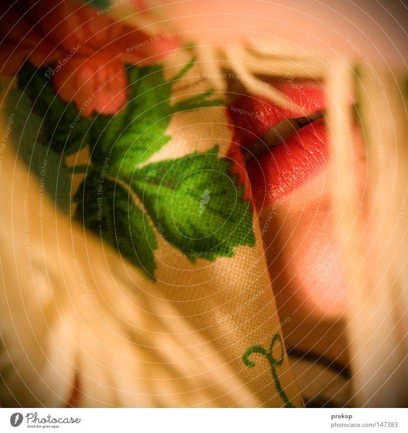Mutter Russland Mund Lippen rot Schminke geschminkt verstecken geheimnisvoll verborgen Blume Pflanze Blatt Stoff Tuch ruhig Zähne fein zart Mode Balkan Ostalgie