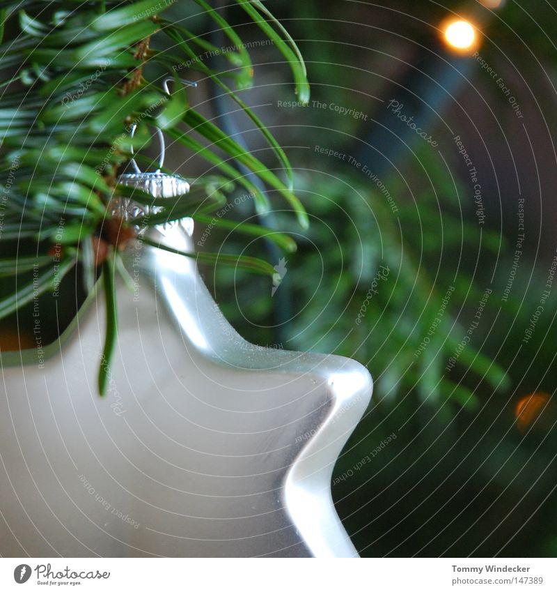 Sternchen Weihnachtsbaum Weihnachten & Advent Tannenzweig Christbaumkugel Baumschmuck Kerze Weihnachtsstern Weihnachtsdekoration geschmückt Licht Schmuck
