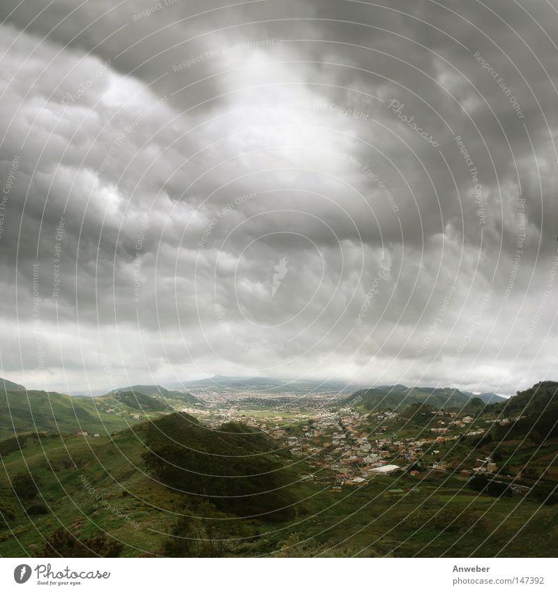 La Laguna (Teneriffa) unter bedrohlichen Passatwolken Natur Himmel Baum grün Stadt Pflanze Sommer Ferien & Urlaub & Reisen ruhig Haus Wolken Ferne Straße Wald