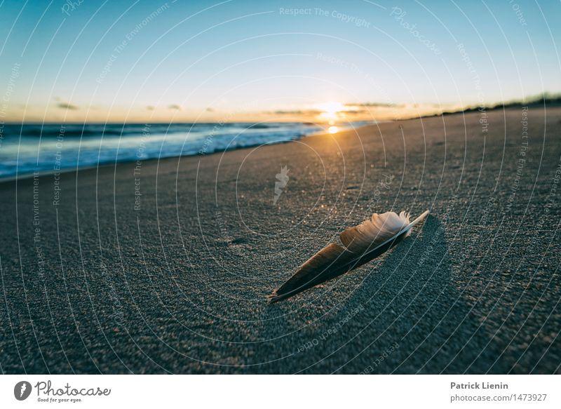 Himmel Natur Ferien & Urlaub & Reisen schön Sonne Meer Landschaft Wolken Strand Umwelt Küste Freiheit Sand träumen Park Wetter