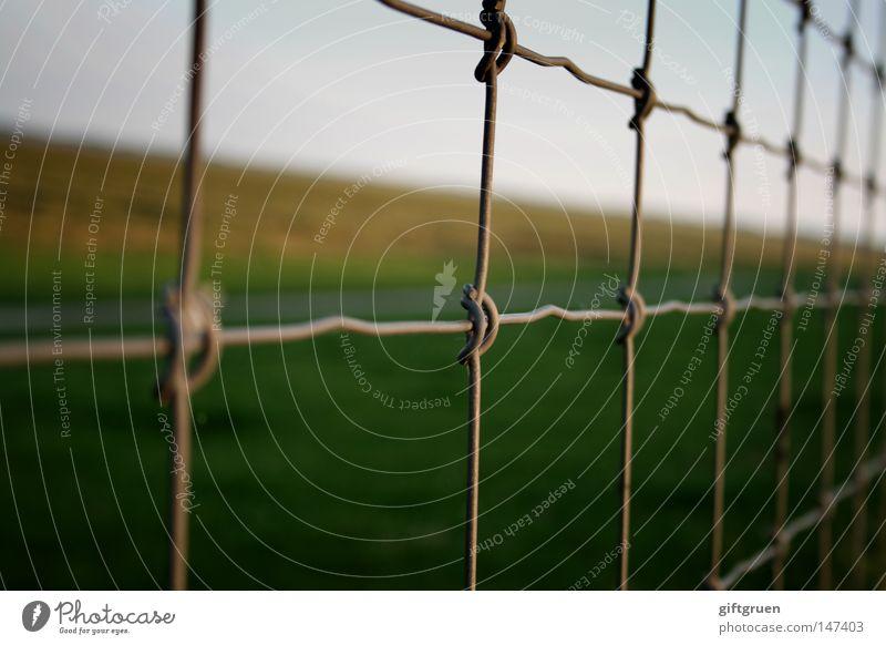 kleinkariert & quergestreift Herbst Freiheit Wege & Pfade Landschaft Horizont geschlossen Sicherheit Aussicht Spaziergang stoppen Streifen Zaun gefangen Gitter