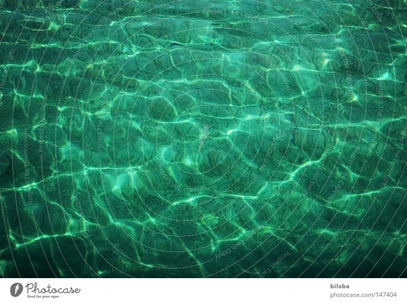 Reflexiones Wasser Leben Teile u. Stücke Urelemente Chemische Elemente elementar See liquide Flüssigkeit Wellen Frieden sanft weich zart ruhig Denken
