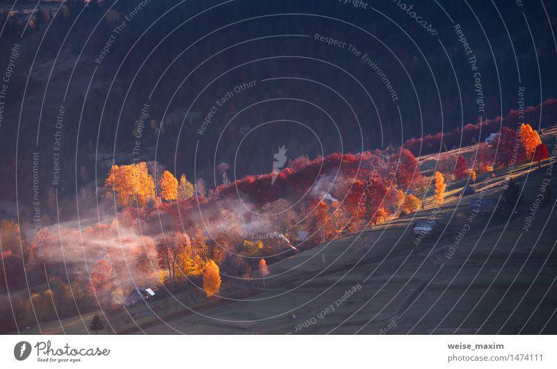 Natur Ferien & Urlaub & Reisen Baum rot Landschaft Wald Berge u. Gebirge gelb Wärme Herbst Wiese Perspektive Europa Hügel Weide Dorf