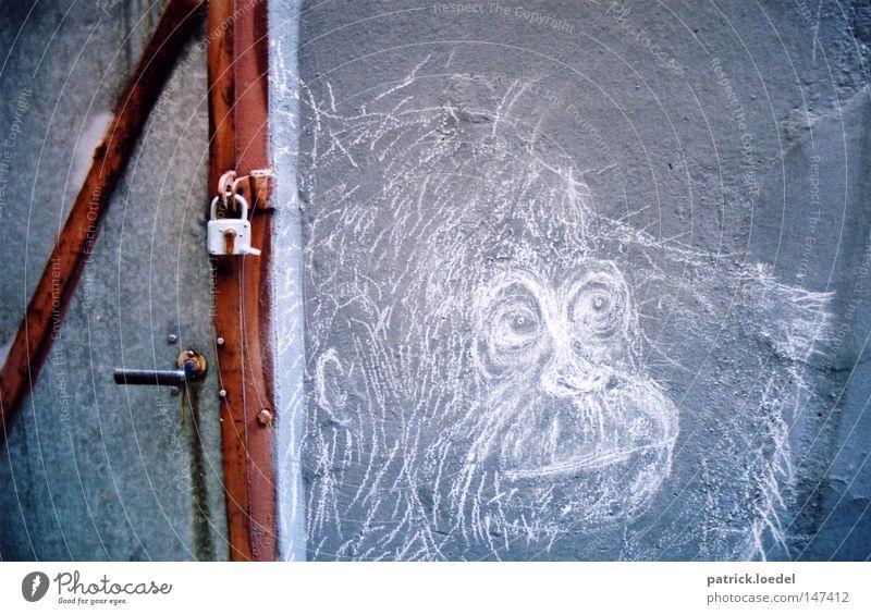 [HH08.3] Klappe zu, Affe tot Mensch alt weiß blau rot Wand Stein Traurigkeit Linie Graffiti braun Angst Kunst Tür geschlossen Trauer