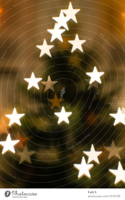 Weihnachtsbaum, abstrakt mit Sternchen Weihnachten & Advent grün weiß ruhig Winter gelb Wärme Feste & Feiern orange glänzend leuchten Dekoration & Verzierung