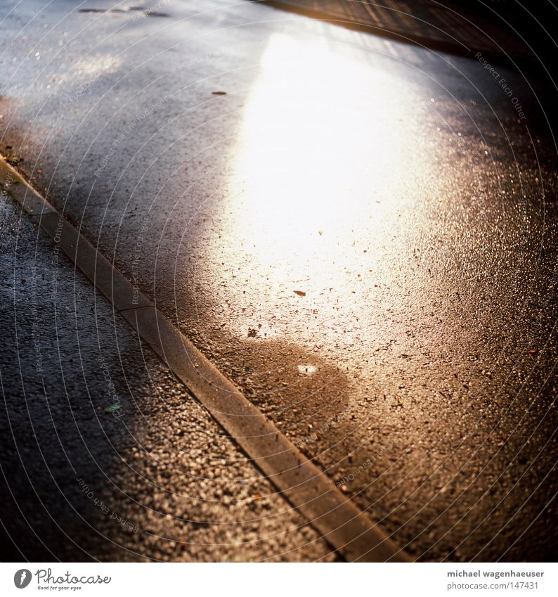 asphaltierter Sonnenschein Straße Herbst grau Regen nass Asphalt Bürgersteig