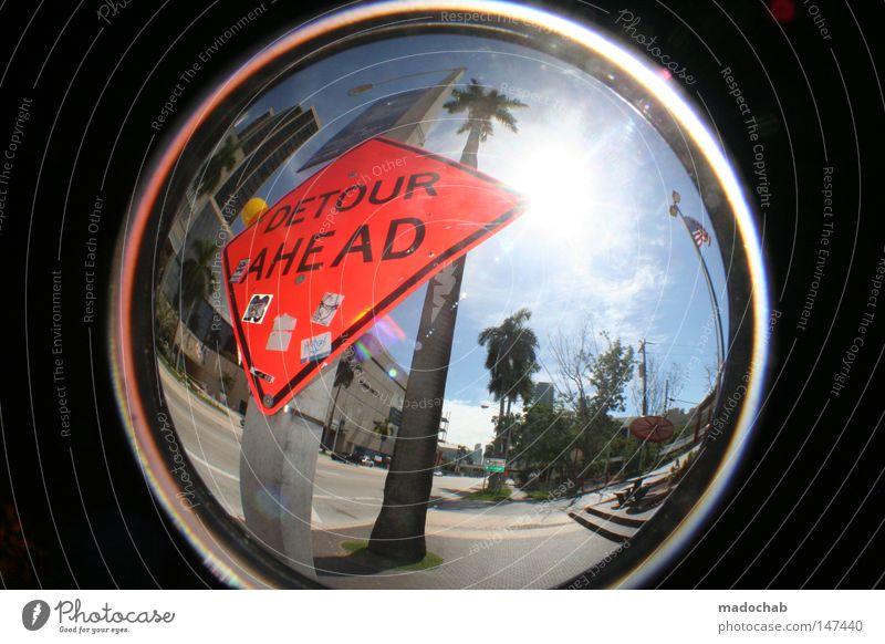 WELCOME TO MIAMI Himmel Sonne Sommer Strand Ferien & Urlaub & Reisen Straße Wärme orange Schilder & Markierungen USA rund Physik heiß Amerika Fischauge Palme